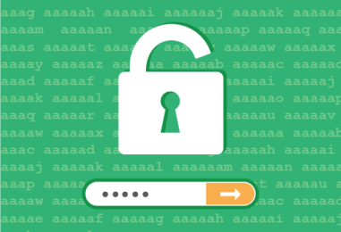 Protéger votre WordPress contre les attaques Brute force