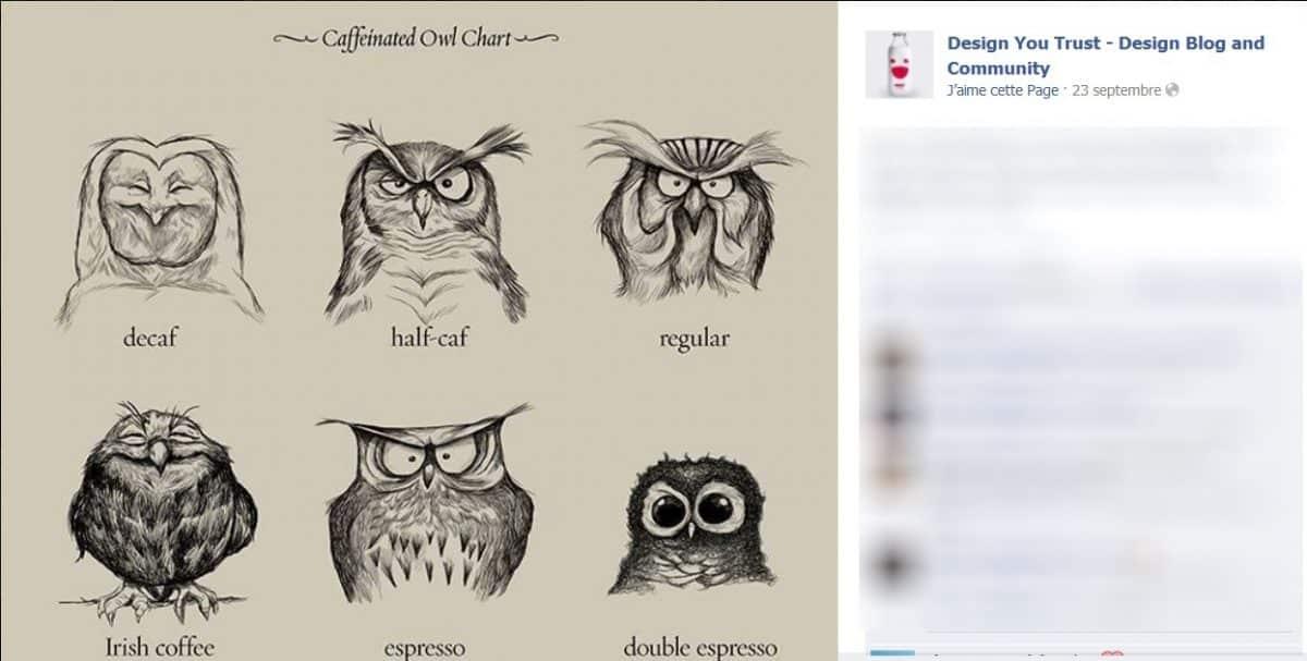 Dessins de hiboux avec des yeux plus ou moins ouverts et un nom de café en-dessous
